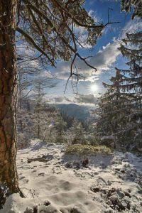 Landscape_VORSCHAUBILD-72